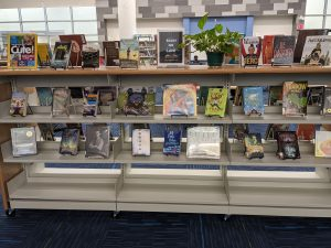 display of books with the title Books We Love